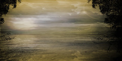 Alba e alberi (Poli Maurizio) Tags: sony sonydsch200 disegno art abstract painting sculpture museum gallery virtual artist master famous canvas painter collection drawing impressionism naturalism renaissance expressionism realism baroque sketch garden portrait autumn flower light nature sky spring summer indoor travel water woman yellow blue black white color movement figure macro photo object fine unlimited still life mattepainting fantasy fantastic facebook twitter linkedin pinterest instagram tumblr outdoor atmosferic watercolor technique surrealism digitalart 3dweddingpartyfamilytravelfriendsjapanvacationlondonbeachcaliforniabirthdaytripnycsummernatureitalyfrancemeparisartflowerssanfranciscoeuropechinaflowernewyorkwaterpeoplemusiccameraphone 3daustraliachristmasusaskygermanynewcanadanightcatholidayparkbwdogfoodsnowbabysunsetcitychicagospaintaiwanjulybluetokyoenglandmexicowinterportraitgreenred 3dpolimaurizioartworkredfunindiaarchitecturegardenmacrospringthailandukseattlefestivalconcertcanonhouseberlinhawaiistreetlakezoofloridajunemaywhitevancouverkidstreecloudstorontobarcelonageotaggedhome 3dbwbwdigitalseadaytexasscotlandcarlighthalloweencampingchurchanimalstreeswashingtonrivernikonaprilbostongirlirelandgraffitiamsterdamrocklandscapeblackandwhitecatsnewyorkcitysanromeroadtripurbanhoneymoonocean 3dwatercolorsnewzealandmarchblackmuseumyorkhikingislandmountainsyellowsydneysunhongkongshowgraduationcolorfilmmountainanimallosangelesschoolmoblogphotodogs 3dartdesigndisegnosiciliacalabriabasilicatacampaniamarcheabruzzomoliselaziotoscanaemiliaromagnalombardiavenetofriuliveneziagiuliapiemontevalledaostaliguriatrentinoaltoadigepuglia 3dlandscapepaesaggiolunasolemarenuvolecittàtramontoalbamontagnecollinenebbialuceautomobilearredamentointerniesterninaturamortacieloragazzadonnauomobambinofruttabarca 3dcanigattirinascimentomodelbarocconaturalismomattepaintingfuturismoastrattismocubismosurrealismorealismoiperealismoclassicismorococomanierismoromanticismoimpressionismogiocovirtu