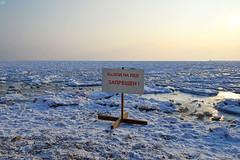 60742552 (aniaerm) Tags: snow ice frost
