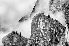 Walls and Clouds and Trees... (Ody on the mount) Tags: anlässe berge bäume dolomiten em5ii felsen felswand fototour gipfel mzuiko40150 nebel omd olympus pflanzen sellamassiv urlaub wolken bw clouds mist monochrome mountains rocks sw trees vertical vertikal wolkensteiningröden bozen italien it