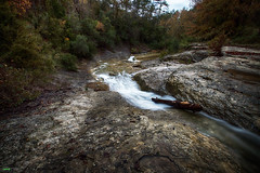 Buscando su camino (candi...) Tags: riera lasauvanegra lapenyora agua corriente bosque arboles tronco naturaleza nature sonya77 rocas