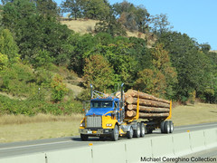 Ireland Trucking Kenworth T800 (Michael Cereghino (Avsfan118)) Tags: ireland trucking logging log truck semi kenworth kw t800 t 800 4 axle quad