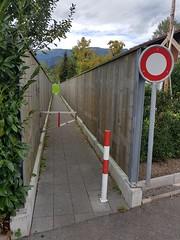 Wilderswil scenes 122 (SierraSunrise) Tags: switzerland wilderswil europe path trail