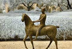 The Pilgrim (infrared) (dr_marvel) Tags: marinomarini marini ir infrared houston tx texas mfah museum art sculpture bronze artwork garden boy horse metal artist patena