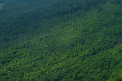 Urbasa (Batix Ezeiza) Tags: urbasa mendia montaña nafarroa navarra euskalherria paisvasco