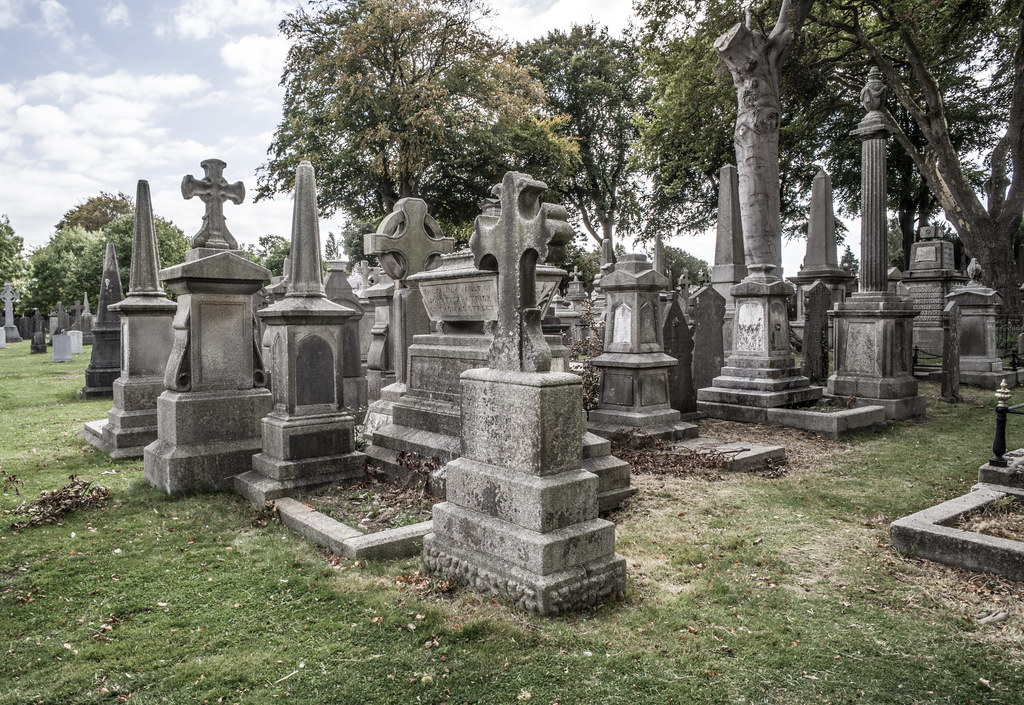 SEPTEMBER 2018 VISIT TO GLASNEVIN CEMETERY [ I USED A BATIS 25mm LENS AND I EXPERIMENTED WITH CAPTURE ONE]-144792