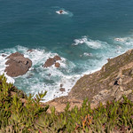 Rocks in the ocean at the coast of Cabo da Roca with Carpobrotus edulis plant in front thumbnail