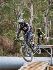 Bush bikes duo (Man+machine) Tags: mountainbikes southernmtb albany bikes bicycles
