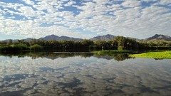 Like Heaven On Earth (VGPhotoz) Tags: vgphotoz arizona heavenonearth clouds reflections usa pano america oasis mirrorimage stillwater calm takeiteasy nature natural relax artphotography photography naturephotography earthart arizonasky arizonabeauty friends fantasticnaturegroup