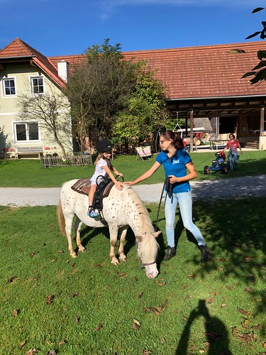 Ponyreiten auf Romeo