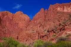 Landscape (Jungle_Boy) Tags: bolivia bolivie southamerica travel 2018 landscape nature scenery mountains red colour color desert stark beautiful