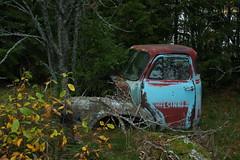 Helsinki-Bedford with low-emission engine (Kekkonen 1900-1986) Tags: bedford abandoned truck finland helsinki rust moss autumn cab