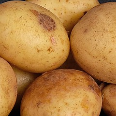 33 of Year 5 - Spuds (Hi, I'm Tim Large) Tags: vegetables potato potatoes veg still life tabletop fuji fujifilm xm1 1650mm xseries