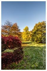 Stourhead Gardens - Wiltshire UK (R ERTUG) Tags: autumncolors stourheadgardens wiltshire stourton warminster uk nikon1635mmf40 nikond610fx rertug ertug