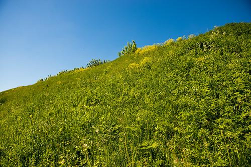 Hill ©  Andrey