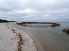Circle (PJD-DigiPic) Tags: pjddigipic breakwaterbeachcapecod brewster massachusetts sea ocean grasscircle sand clouds cloudsstormssunrisessunsets beach