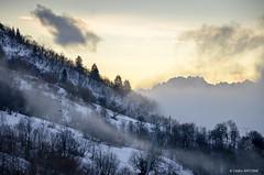 Morning in Saint-François Longchamp (cedant1) Tags: mist morning mountain ski light fog trees pines cloud saintfrançois longchamp france winter