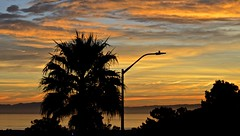 All Saints Day sunrise (1) (David McSpadden) Tags: 11118 dalycity sunrise sfbay