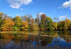 DSC04926b (Naturecamhd) Tags: dschx90v hx90v newyorkbotanicalgarden nybg botanicalgarden nature bronx green eco sonyhx90v thebronx sonydschx90v fall fallfoliage autumn twinlakes reflection