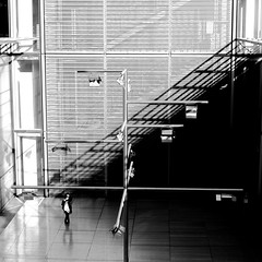 In the brilliant yard (pascalcolin1) Tags: paris13 bnf femme woman cour yard photoderue streetview urbanarte noiretblanc blackandwhite photopascalcolin 5omm canon50mm canon carré square