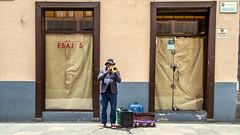 Trumpet Player / Trompetista (López Pablo) Tags: trumpet man people windows street lalaguna urban canary islands tenerife spain canon powershot