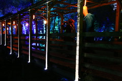 2018 - 4.10.18 Enchanted Forest (36) (marie137) Tags: forest lights trees show marie137 bright colourful pitlochry treeman attraction visit entertainment music outdoors sculptures wicker food drink family people water animation