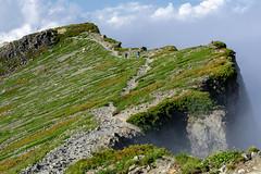 Mt.Shiroumadake (bamboo_sasa) Tags: 白馬岳 北アルプス 後立山連峰 白馬村 長野県 信州 日本 登山 百名山 mtshiroumadake northern alps mountain 山 hakuba nagano shinshu japan trekking abendrot