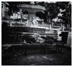 Holga Camera 120-N (Street Photography) (JOSEAN GOMEZ) Tags: textures texturas blancoynegro blackwhite analogue streetphotography silverefexpro2 sombras shadow sombra sidewalk epsonperfectionv500scanner