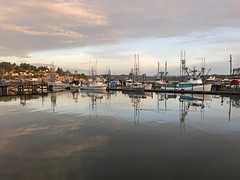 Newport, Oregon - Yaquina Bay - 2018 (tonopah06) Tags: newport oregon or 2018 yaquina iphone ocean bay sunset yaquinabay marina boats docks harbor bayfront coast