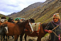 The Highland lass !! (Lopamudra !) Tags: lopamudra lopamudrabarman lopa landscape portrait ladakh jk india nomadic rustic mountain mountains himalaya himalayas highaltitude highland lass girl lady woman horse mule animal culture life journey suru suruvalley valley vale