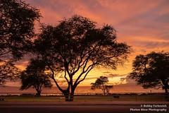 Maui Sunset (BobbyFerkovich) Tags: