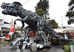 Tyrannosaurus rex (Will S.) Tags: mypics porthope ontario canada primitivedesigns art sculpture robot autoparts