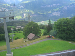 CIMG5598 (KENS PHOTOS2010) Tags: architecture animals buildings cows countryside flowers fields farming farms switzerland