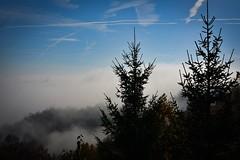 Sunny autumn day (bornapetrovcic) Tags: hrvatska tourism green blue clouds sun sky pine park nature zumberak croatia lagotto'speak autumn