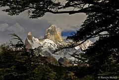 DSC0216 El Chalten o Fitz Roy, 3405 m., Andes patagónicos, Argentina (Ramón Muñoz - Fotografía) Tags: los andes argentina el chalten fitz roy patagonia montañas de parque nacional glaciares