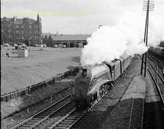 Dundee 60031 1964 b320 (Ernies Railway Archive) Tags: nbr lner lms cr scotrail dundeestation