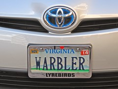My License Plate (William Young Fascinations) Tags: virginia licenseplate warbler williamyoung bird songbird lyrebird australia migration vanityplate