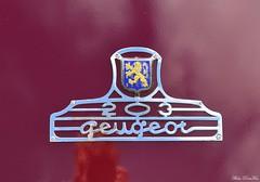 1950 Peugeot 203 berline (pontfire) Tags: cars voiture old antique classic vieille ancienne collection car auto autos automobili automobile automobiles voitures coche coches wagen pontfire oldtimer vintage classique pontifre bil αυτοκίνητο 車 автомобиль la en anciennes française french chantilly arts et élégance 2017 châteaudechantilly peterauto chantillyartsélégance2017 richardmille chantillyartsetélégance chantillyartsetélégance2017 chantillyartsélégance berline