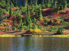 Picture Lake in WA (Landscapes in The West) Tags: picturelake artistpoint northcascadesnationalpark washington pacificnorthwest landscape west mount bakersnoqualmie national forest
