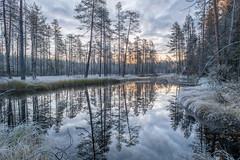 Sunrise on a cold autumn morning. (teetaira) Tags: autumn nationalpark river cold reflection sunrise trees clouds sky auringonnousu joki kansallispuisto hiidenportti finland metsä puut pakkanen huurre kuura rime