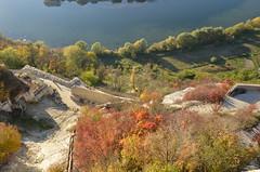 DSC_5415 (Sector2000) Tags: осень золотаяосень парк природа листья деревья automn выходной лес парки
