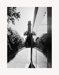 Sevilla 120 (BLANCA GOMEZ) Tags: spain sevilla seville andalucia andalusia arquitectura architecture bw blackwhite patterns silhouettes light shadows reflection glass torredelosperdigones camaraoscura tower heat hot