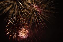 _DSC6301 (erengun3) Tags: fiftofnovember 5thofnovember firework fireworks havayifişek southwark southwarkcouncil council southwarkpark southwarkfireworks 2018 southwarkfireworks2018 se16 guyfawkes fireworksnight explosives