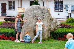 _DSC1526.jpg (Kaminscy) Tags: grass roztocze bear jozefow monument kids europe zamojszczyzna poland józefów lubelskie pl