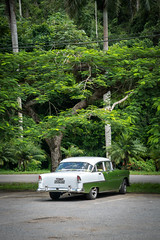 Vinales, Cuba (ChrisGoldNY) Tags: chrisgoldphoto chrisgoldny chrisgoldberg cuba cuban caribbean latinamerica licensing forsale cubano bookcover albumcover travel viajes sonyalpha sonya7rii sonyimages