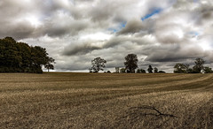 Work the land. (Mellisapix) Tags: habitat environment agriculture mothernature earthday earth britishfarming harvested england uk farmland clouds trees branches empty land cleared bare landscape crops farming fields field harvest