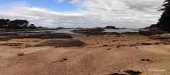Tregastel (claude 22) Tags: mer sea gr34 sand beach plage cotedegranitrose tregastel tourony bretagne france breizh brittany landscape panorama paysage