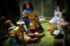 Paprihaven 1453 (MayorPaprika) Tags: 16 custom diorama toy story paprihaven action figure set doll canoneosrebelt6i macro efs60mmf28macrousm takara cg cygirl mego dorothy wizardofoz pullip junplanning aliceinwonderland garden