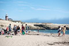 santa cruz (dolanh) Tags: lighthouse santacruz california beach