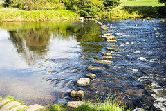 Stepping Stones (Kingsley_Allison) Tags: stream steppingstones river bridge beck stones stonebridge yorkshire riverwharfe doe hebden grassington burnsall hikers walkers nikon d7200