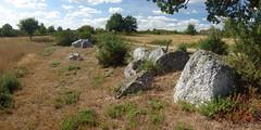 L'alignement de menhirs de Forgerais à Saint-Just - Ille-et-Vilaine - Septembre 2018 - 03 (Erwan Corre) Tags: mégalithe menhir illeetvilaine bretagne france quartzite quartz saintjust stjust cojoux landesdecojoux forgerais alignement